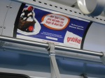 This was the ad that was closest to where I usually sit on the bus, if the bus isn't crowded and I can sit where I prefer.  It seemed like an ad in support of child molestation, so I took a picture of it.